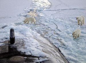 US Navy submarine in the Arctic
